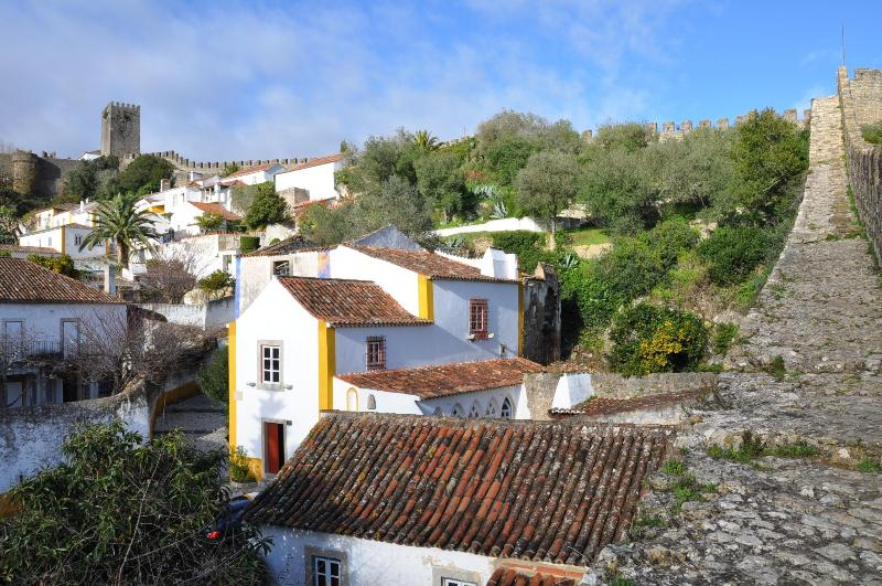 View of house from castle wall - Obidos Castle - Unique luxury 3 bedroom house - Obidos - rentals