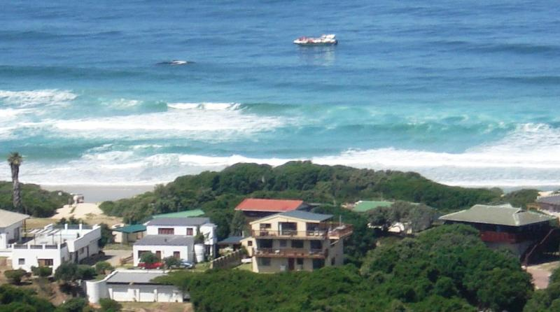 The beach house shot from the hill behind - 5 bedroom beachhouse with spectacular 360° views - Plettenberg Bay - rentals