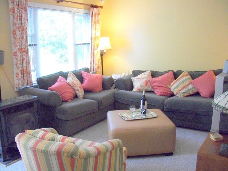 Living Room - Skyview  - Sunny Comfortable Stowe Vermont  Condo - Stowe - rentals