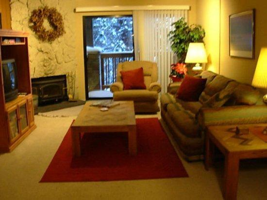 Walking Distance to Eagle Express Mammoth Ski Home - Image 1 - Mammoth Lakes - rentals