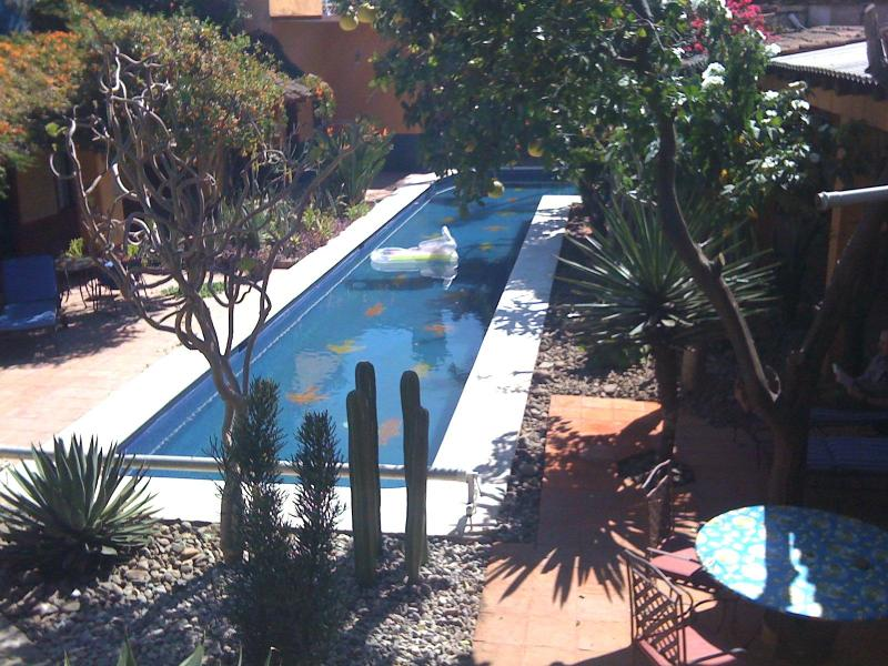 Living spaces radiate around the 75 ft. long swimming pool - Villa with Pool & Gardens in Historic Center - Oaxaca - rentals
