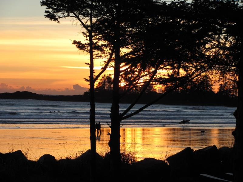 South Chestermans beach - Ruby's Riptide Retreat B&B - Ucluelet - rentals