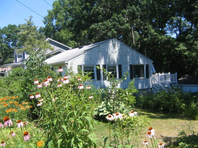 south side of house - Niantic Beach Cottage - Niantic - rentals