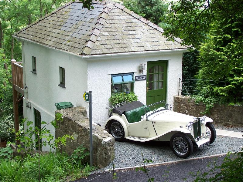 Cosy cottage in the trees - Tree Tops Cottage - Llanbedr - rentals