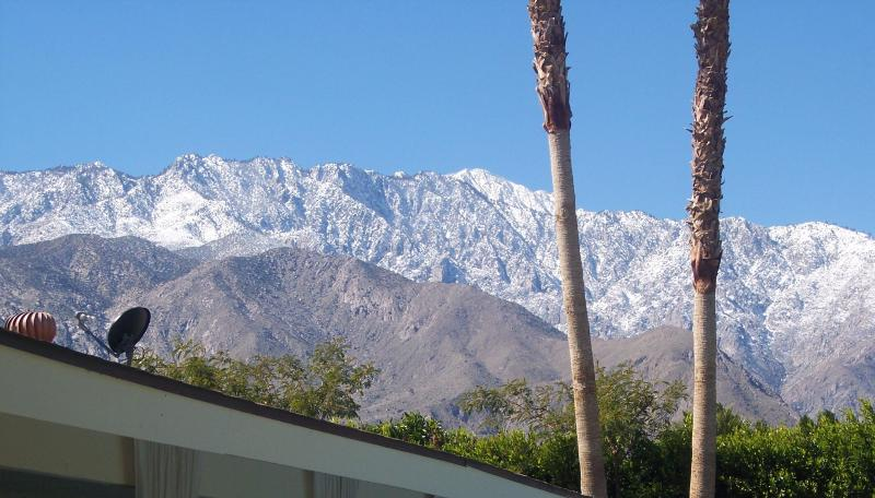 Hot Tin Roof - Book 3 nights = 4th night for FREE - Image 1 - Palm Springs - rentals
