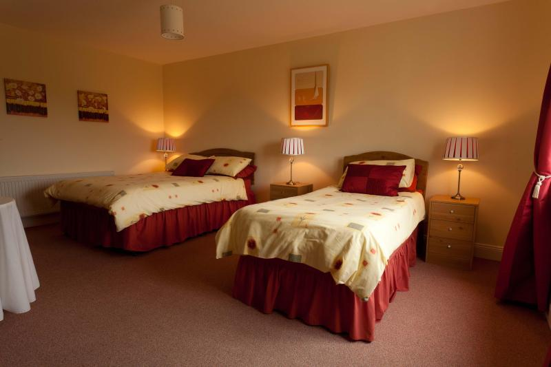 Avoca Lodge B & B Accommodation - Image 1 - Cahersiveen - rentals