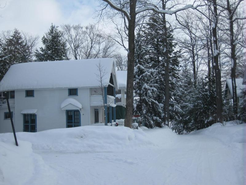 Cottage at Chautauqua Institution, New York state. - Image 1 - Chautauqua - rentals