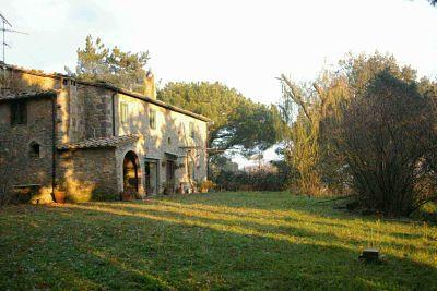 Le Piane - In the heart of the Tuscan county - Image 1 - Montecatini Val di Cecina - rentals