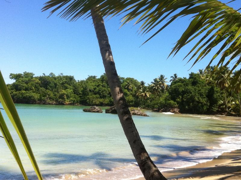Dreams are made of this! - Feet in the sand!  unpack and unwind here! - Las Terrenas - rentals