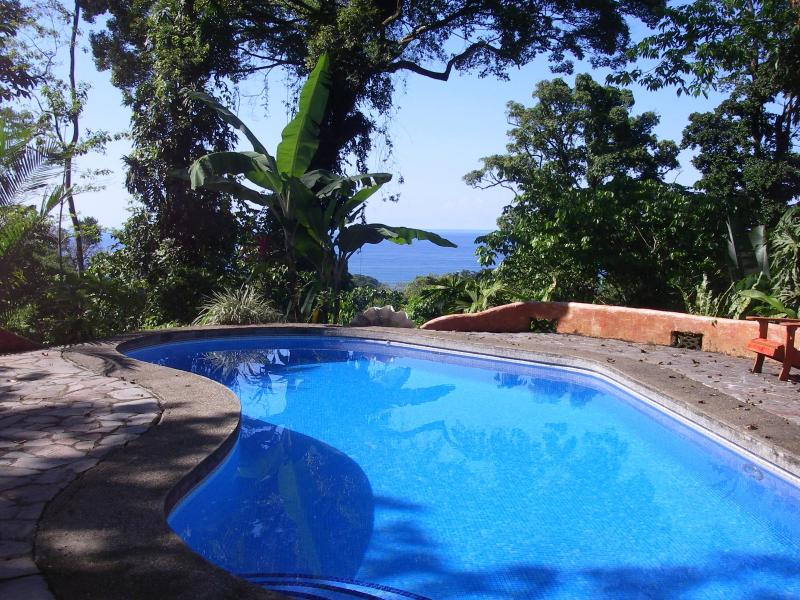 Wonderful , private ocean view pool - Cielomar Lodge and Jungle Preserve - Puerto Viejo de Talamanca - rentals