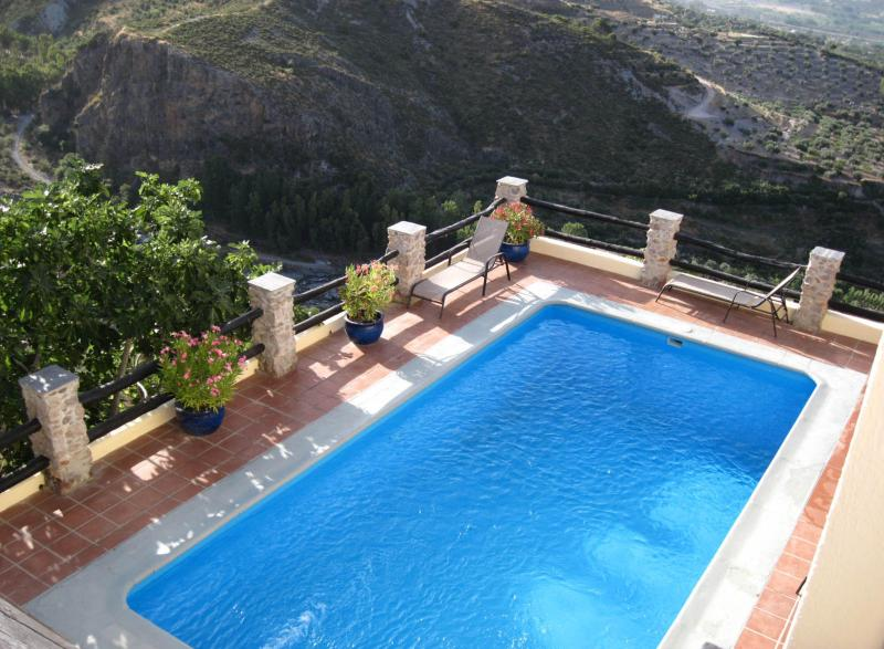The main swimming pool - Holiday Rental, Órgiva, La Alpujarra, Andalusia - Orgiva - rentals