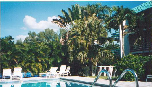 Heated Pool at Saniel Siesta - Breathtaking 2 BR/2 Ba, 77 Steps to the Beach - Sanibel Island - rentals