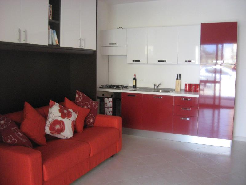 Studio, showing Kitchen Area - Fantastic Studio Apartment in Southern Italy - Pizzo - rentals