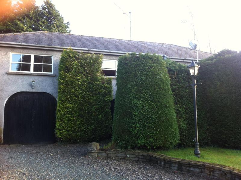 Coach House - Lovely 3 bed  Coach House sleep  10 - Naas - rentals