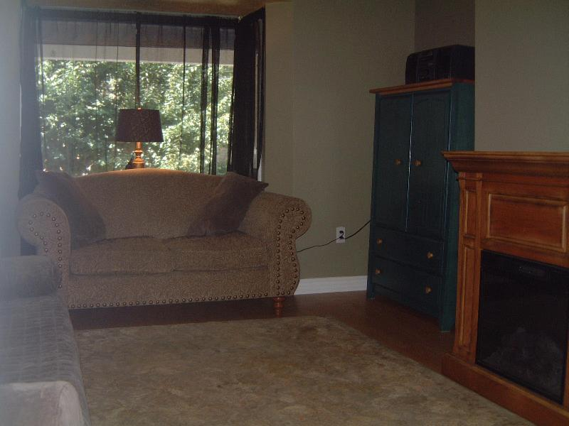 Living Room with Quality Pull Out Sofa - Entire Suite in Downtown - Toronto - rentals