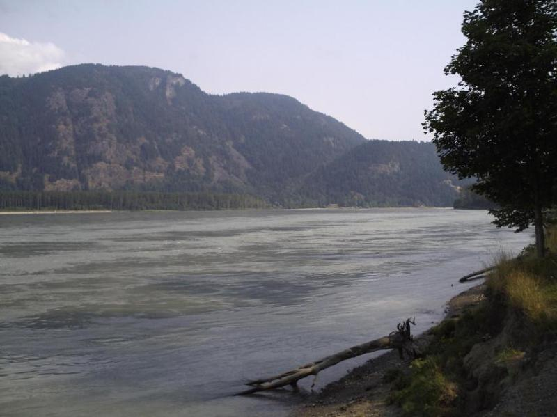 Fraser River at Island 22 - 5 minutes from Fish Inn BB to boat launch - Fish Inn Bed and Breakfast - Chilliwack - rentals