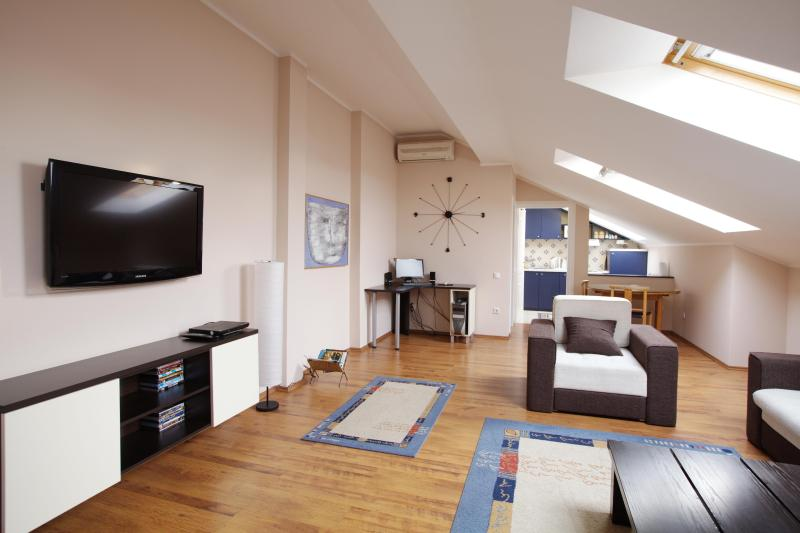 Living Area - Belgrade Apartment - Belgrade - rentals
