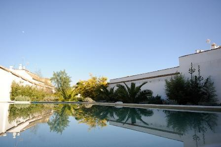 view of garden and swimming pool from dining room - Historic villa with big pool & garden in Andalucia - Ecija - rentals