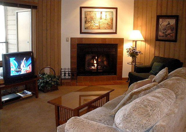 Living room. - Charming ground floor condo, sit by the fireplace and watch the wildlife! - Oretech - rentals
