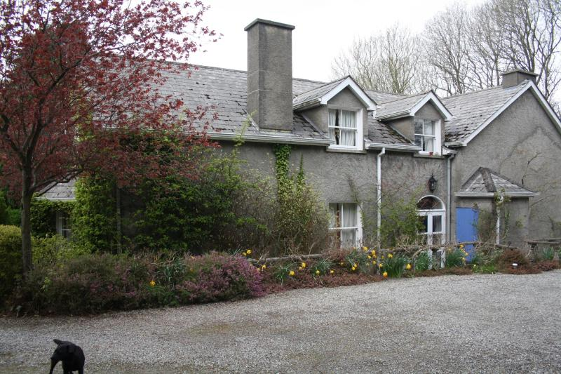 Lots of secure Parking around the house - Moate House Bed & Breakfast Rathmore Naas  Kildare - Naas - rentals