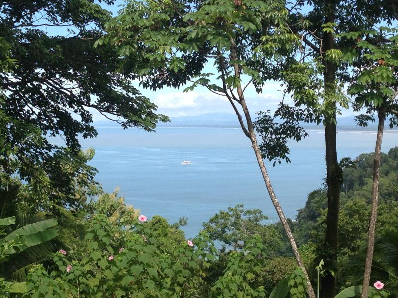 View from the house to the ocean & the mountains - Superb Ocean View Villa–Ideal for Nature Lovers! - Manuel Antonio - rentals