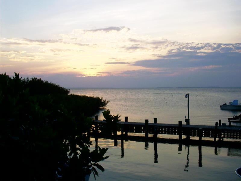 Sunset Views from Dock - Islamorada Tropical Escape! Clean, Affordable & Licensed for Weekly Rental! - Islamorada - rentals