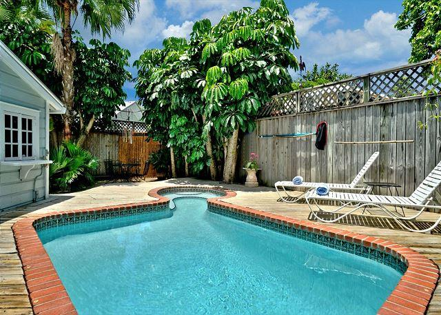 Private Free Form Pool and Deck Area With Lush Plantings, Loungers, and Decking - Passover Cottage - Nightly - Key West - rentals