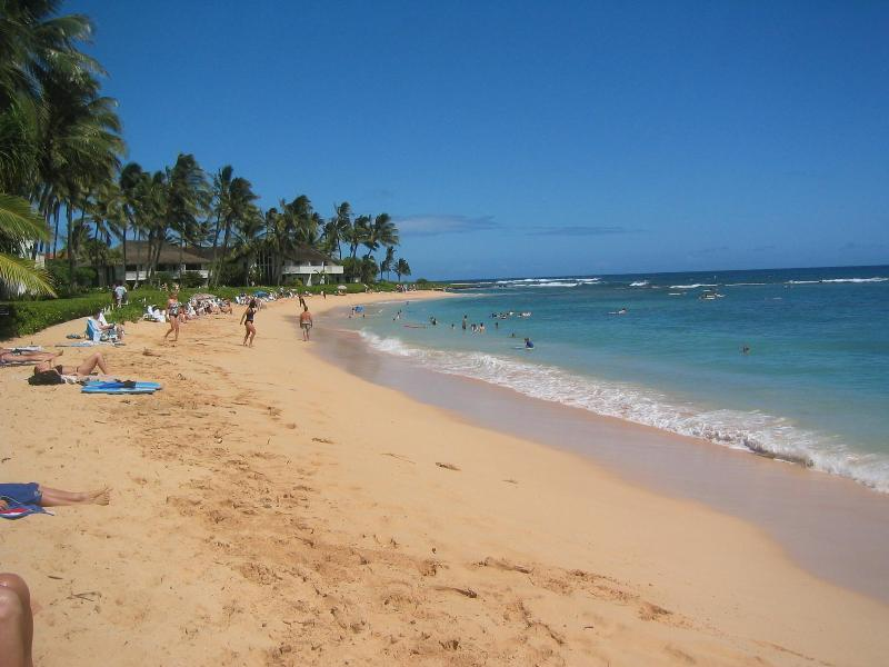 Beach - Kiahuna Plantation Condominium Unit 104 - Koloa - rentals