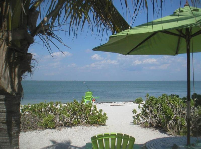 View from Cottage - Caper Beach Cottage Just Right for 2; Kayaks Bikes - North Captiva Island - rentals