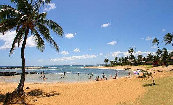 Poipu Beach Park - Commanding View of POIPU BEACH Coastline to SUNSET - Poipu - rentals