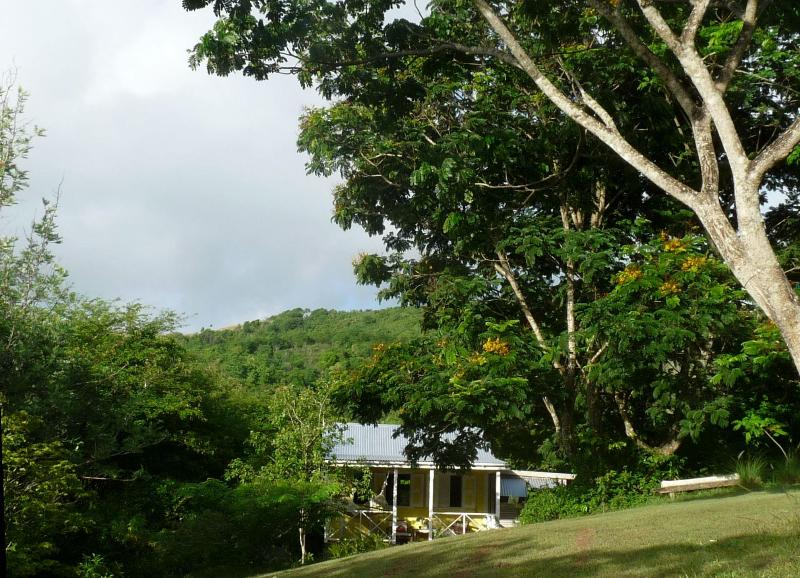 The cabin in its landscape - Eco Cottage in Caribbean Woodlands - Antigua and Barbuda - rentals