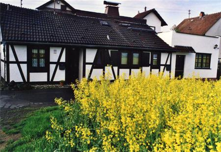 Vacation Apartment in Büdingen - table cloths, bedsheets, towels provided! (# 592) #592 - Vacation Apartment in Büdingen - table cloths, bedsheets, towels provided! (# 592) - Budingen - rentals