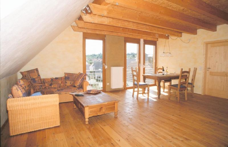 Living Room (1) - Vacation Apartment in Eichstetten am Kaiserstuhl - 7298 sqft, located near vineyard, peaceful, cozy,… - Boetzingen - rentals