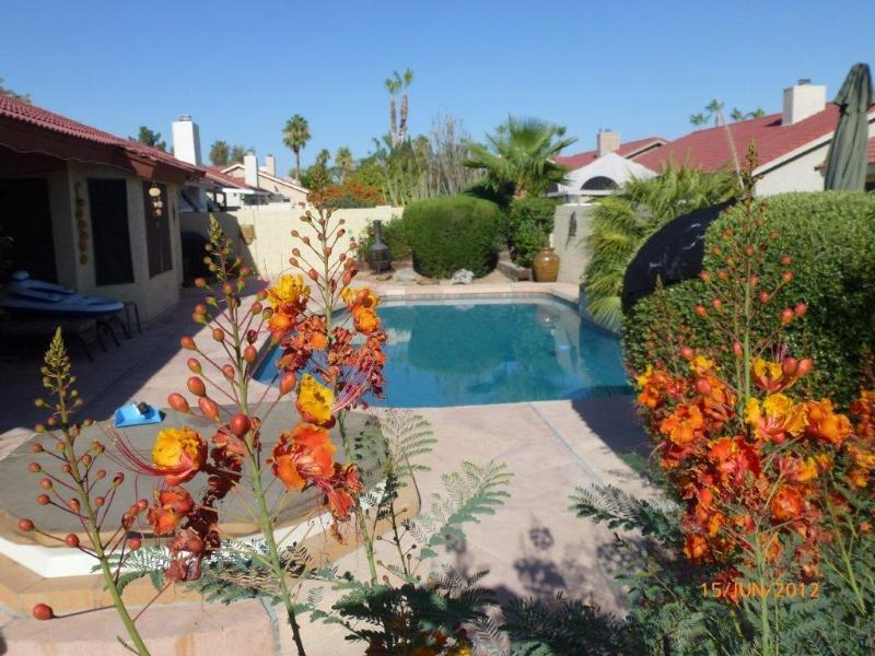 New PebbleTec Pool through Paradise - Luxury 4 Bed 2 Bath & Private Heated Spa and Pool - Scottsdale - rentals