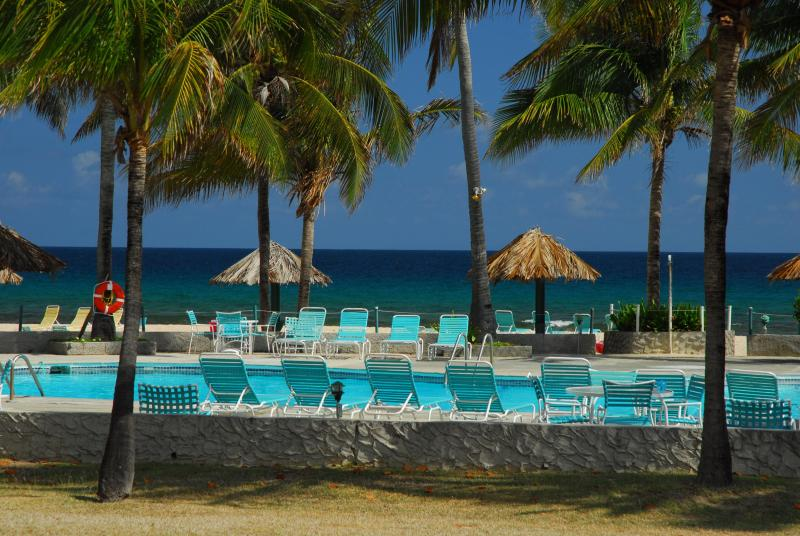Pool - Luxury private 2 BR condo at Gentle Winds - Christiansted - rentals
