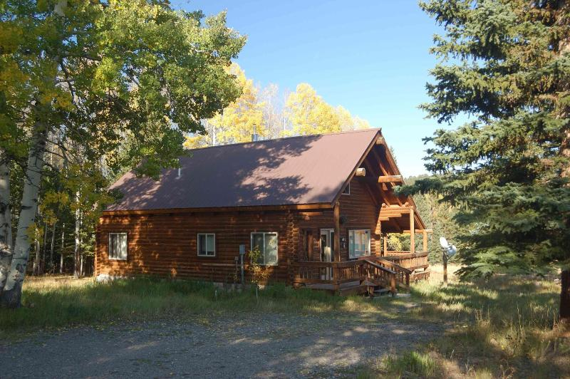 Cabin in summer viewed from road - San Juan Mtn Cabin-Hunt, Snowmobile, Xcountry Ski - Cimarron - rentals