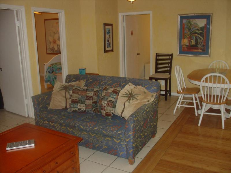 Living Room Hideaway Beach Apartment - Hideaway Cottage/3bedroom/5 beds/pets ok/beach - Clearwater Beach - rentals