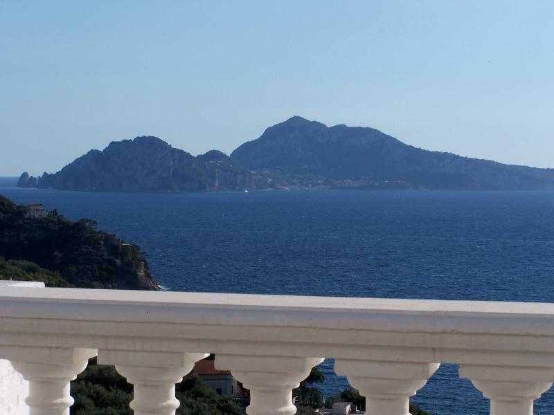 view from terraces - Villa Recently Renovated with Amazing Sea View - Sorrento - rentals