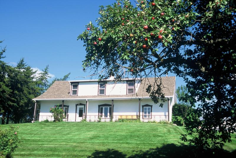 Summer the house with apple tree on 2 acres - HISTORICAL  TREASURE at MONT-SAINTE-ANNE - Quebec City - rentals