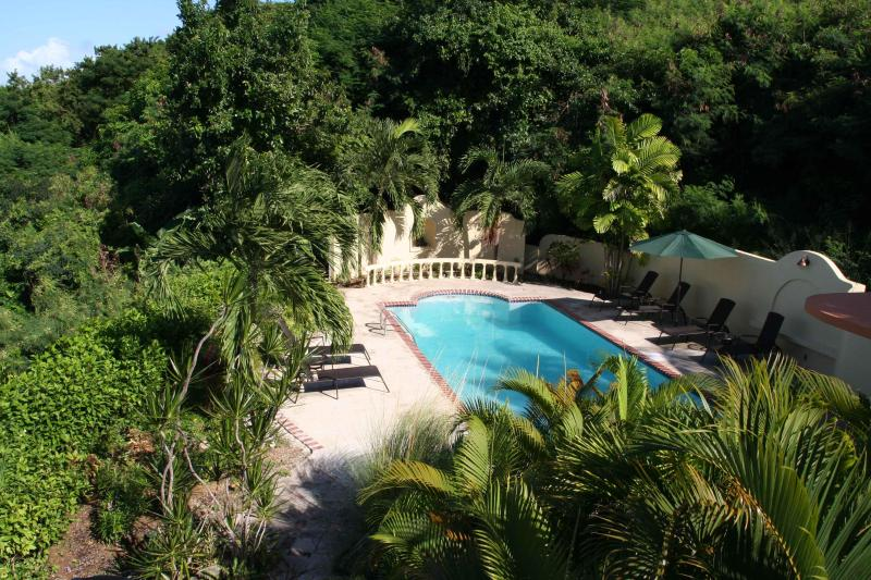Fabulous Ocean Views-Gorgeous & Private Pool, Gardens & Fountains - Vieques' Most Private Getaway - Vieques - rentals