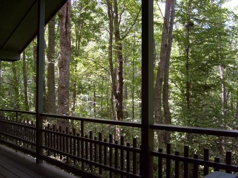 Mountain Cottage with Cascading Waterfall, hot tub - Image 1 - Brevard - rentals