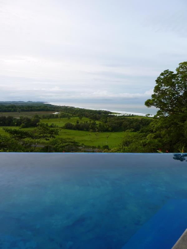 Endless Pool with Amazing Views - SPECTACULAR Panoramic Ocean & Jungle Views - Playa Hermosa - rentals