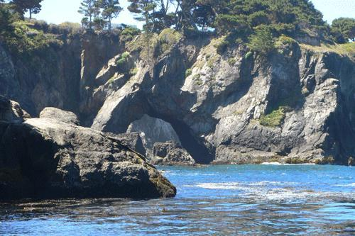 Sea arches at the beach - Charming Oceanfront Cottage, Beach, Stunning Views - Mendocino - rentals