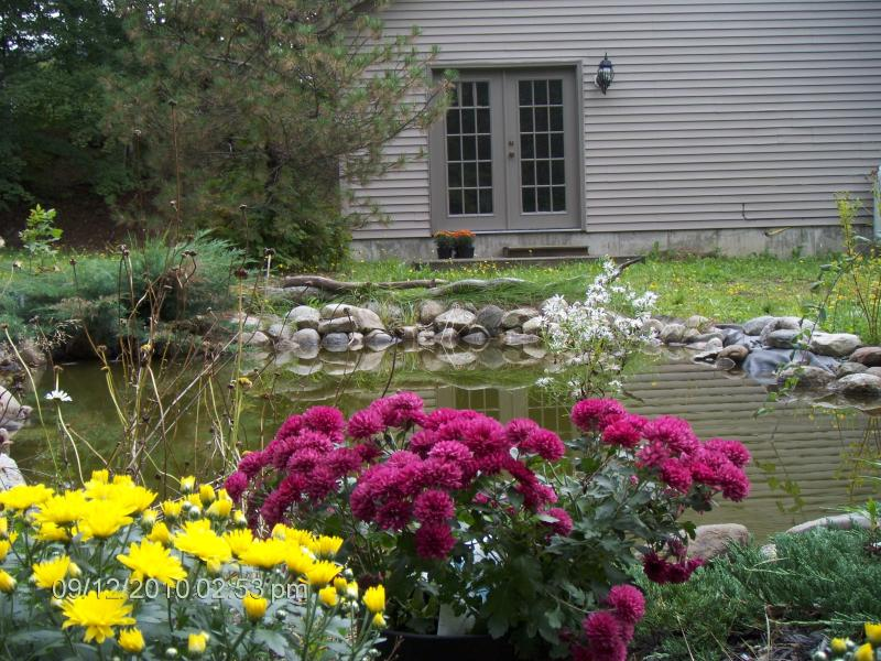 view pond from private deck - 2 bedroom cottage in beautiful White Mountains - Bethlehem - rentals