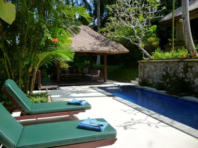 Your private pool and sitting bale - Gorgeous! Villa Teras Sungai 2 bdrm Ubud Center - Ubud - rentals