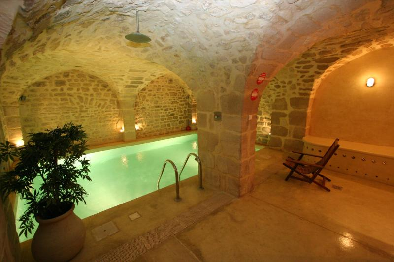 Heated private pool, next to the gym - Maison d'Anne - Paris Historic BnB - 5th Arrondissement Panthéon - rentals