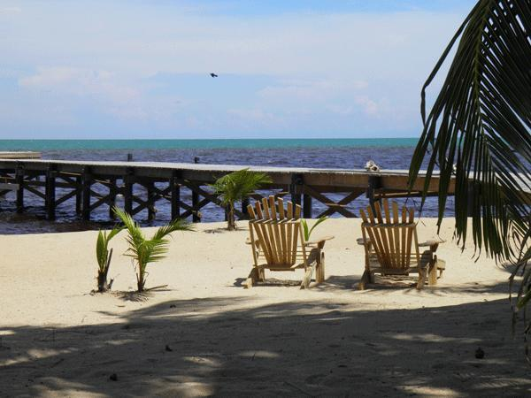 You could be here on your own private beach! - Sabal Beach - Secluded eco-friendly beach retreat - Toledo - rentals