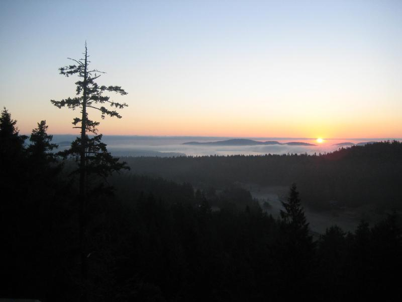sunrise from suite deck - Hummingbird Hill Bed&Breakfast / Japanese Teahouse - Salt Spring Island - rentals