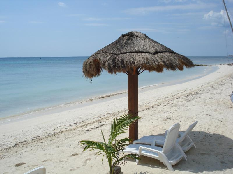 MILLION $ VIEW_Suite w/ Private Jacuzzi in the sky - Image 1 - Puerto Morelos - rentals