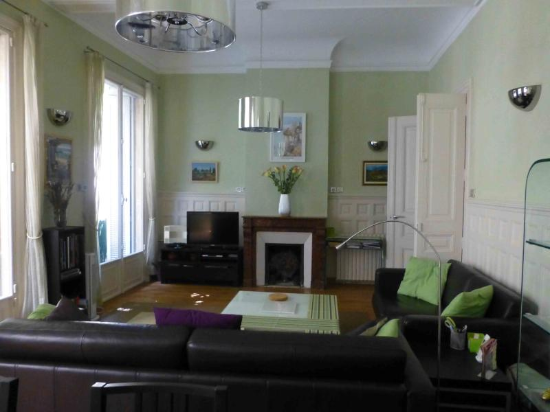 Living room - 2 bedroom,2 bath apartment in heart of Montpellier - Montpellier - rentals